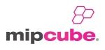 Logo-MIPCube-2013